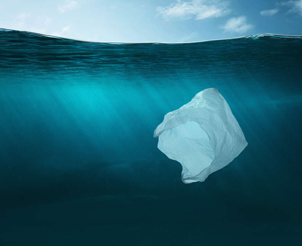 Las bolsas de plástico y el medioambiente en la actualidad